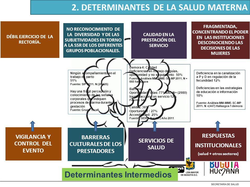 2. DETERMINANTES DE LA SALUD MATERNA