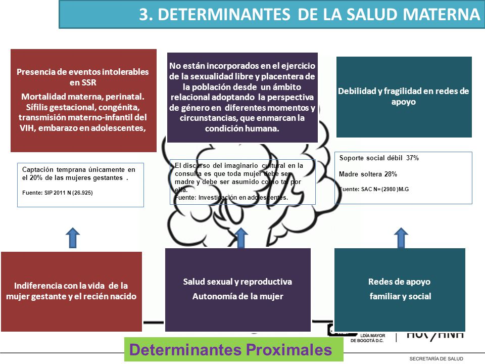 3. DETERMINANTES DE LA SALUD MATERNA