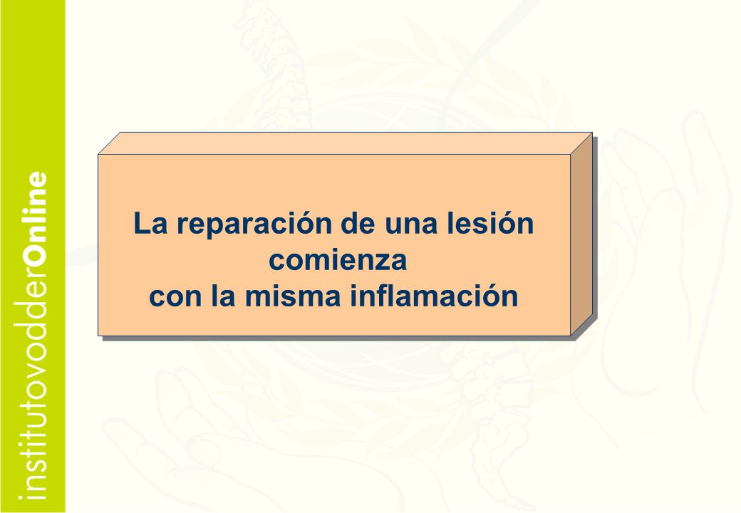 La reparación de una lesión con la misma inflamación