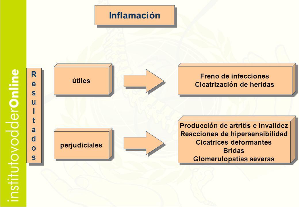 Inflamación R e s u l t a d o Freno de infecciones útiles