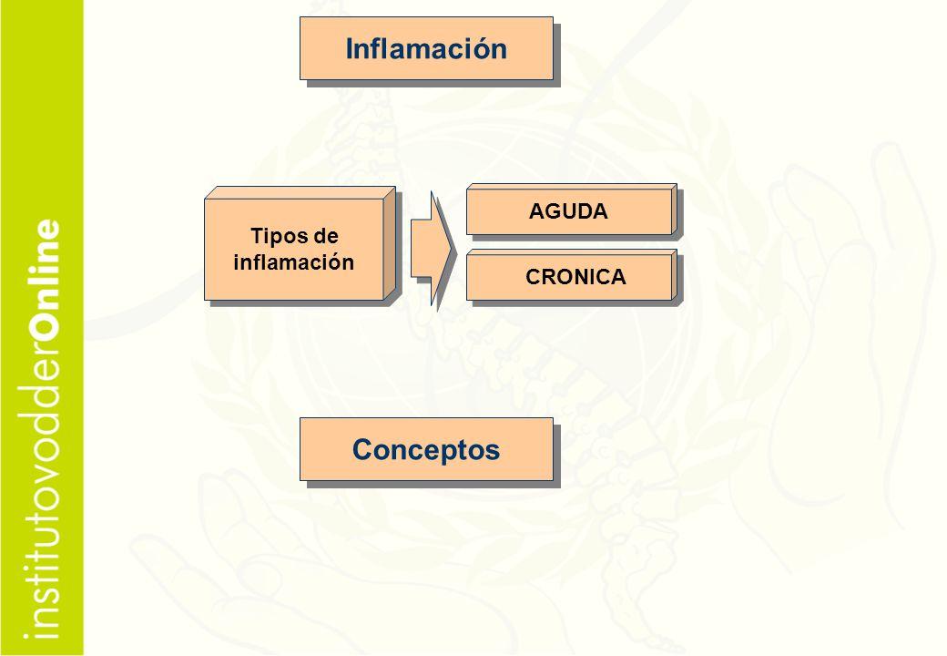 Inflamación Conceptos