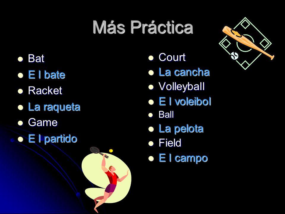 Más Práctica Bat E l bate Racket La raqueta Game E l partido Court