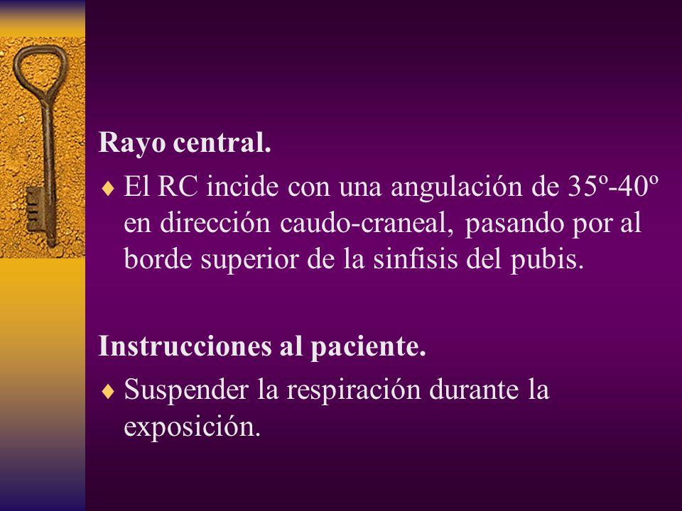 Rayo central. El RC incide con una angulación de 35º-40º en dirección caudo-craneal, pasando por al borde superior de la sinfisis del pubis.
