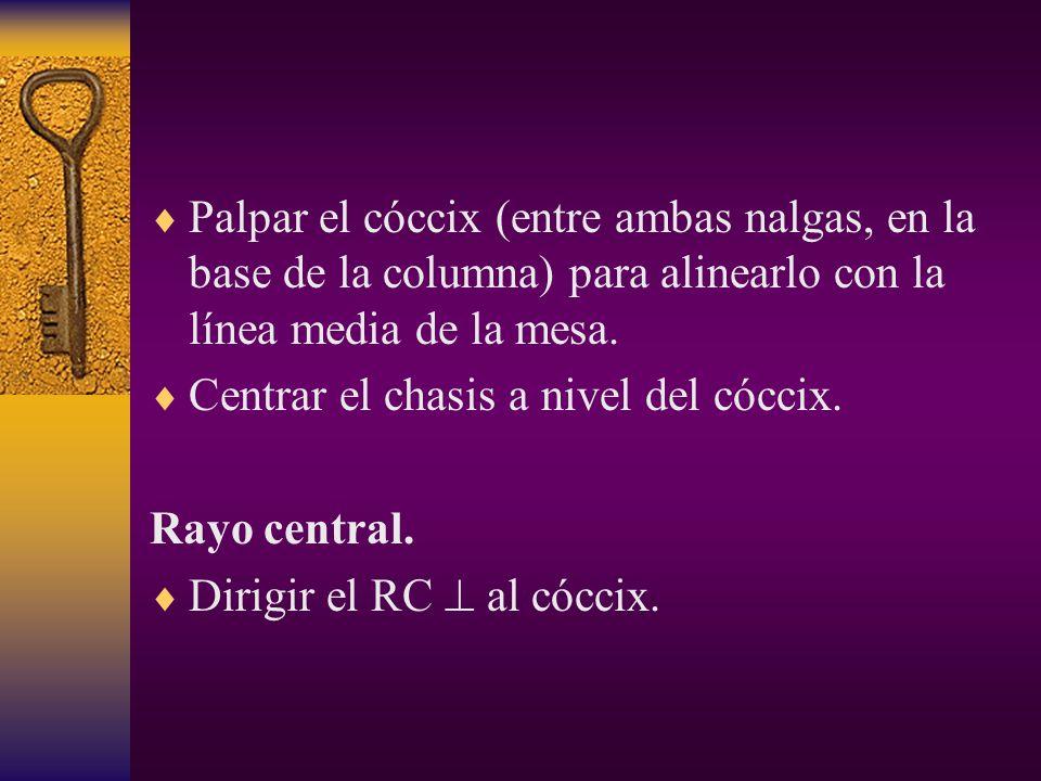 Palpar el cóccix (entre ambas nalgas, en la base de la columna) para alinearlo con la línea media de la mesa.