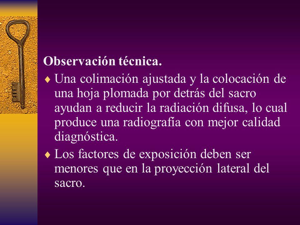 Observación técnica.