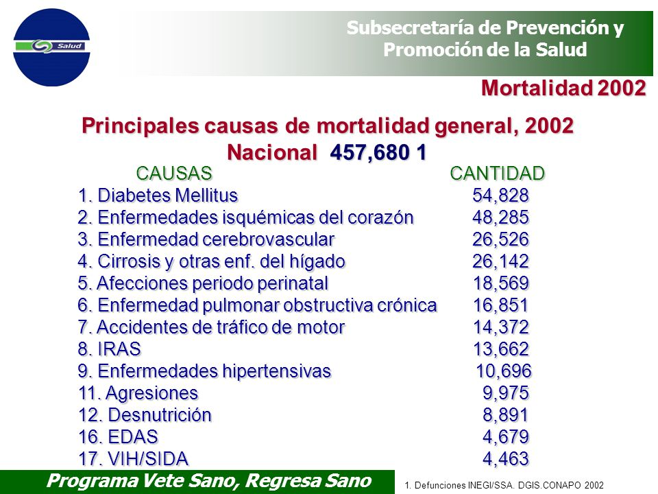 Principales causas de mortalidad general, 2002