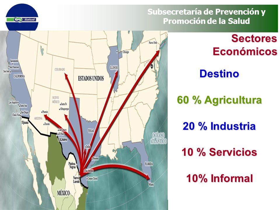 Sectores Económicos Destino 60 % Agricultura 20 % Industria 10 % Servicios 10% Informal