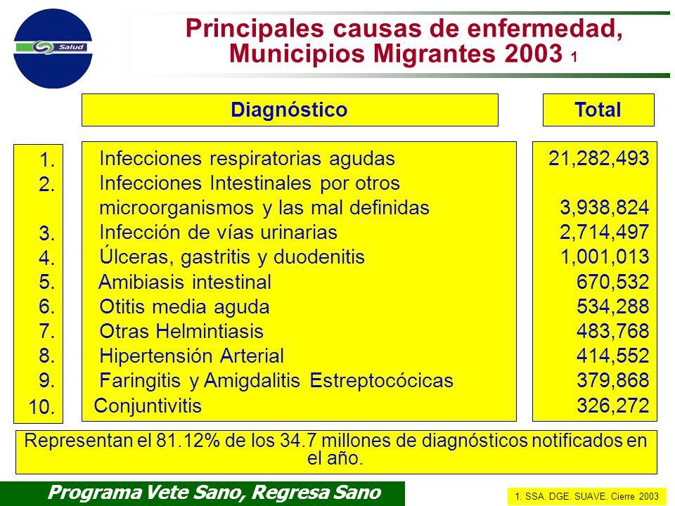 Principales causas de enfermedad, Municipios Migrantes 2003 1