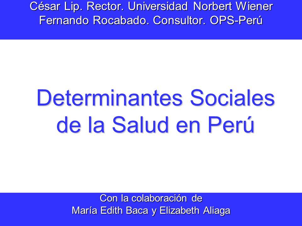 Determinantes Sociales de la Salud en Perú