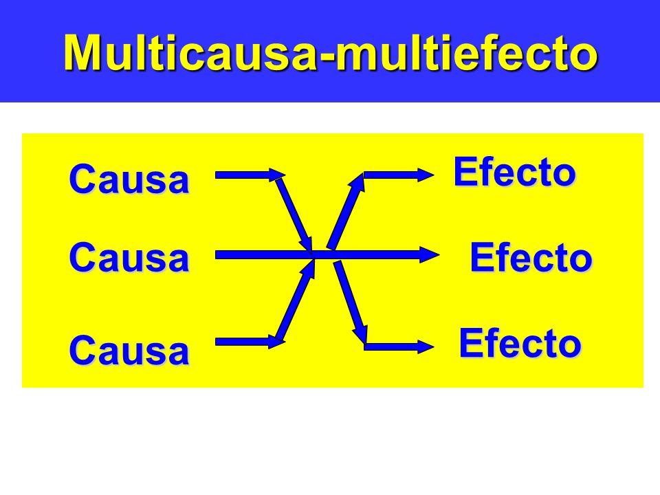 Multicausa-multiefecto