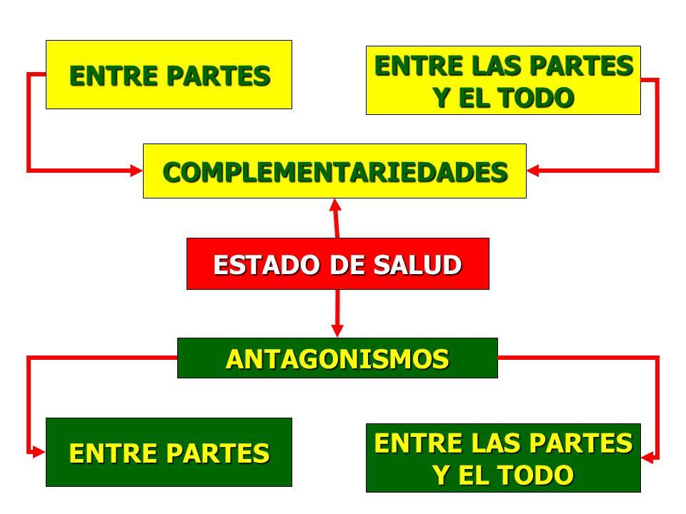ENTRE PARTES ENTRE LAS PARTES. Y EL TODO. COMPLEMENTARIEDADES. ESTADO DE SALUD. ANTAGONISMOS. ENTRE PARTES.