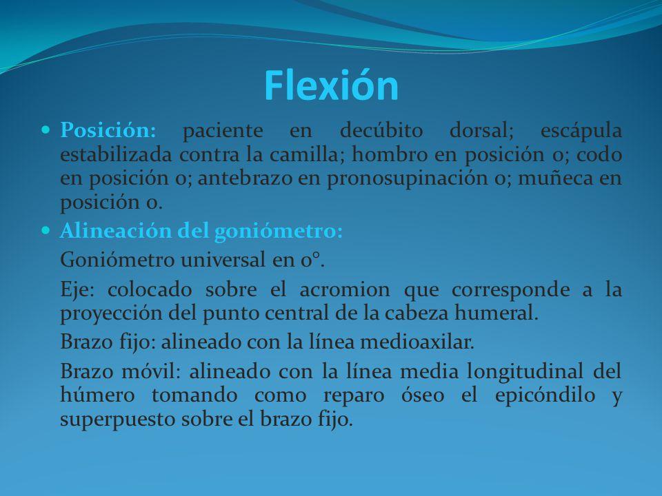 Flexión