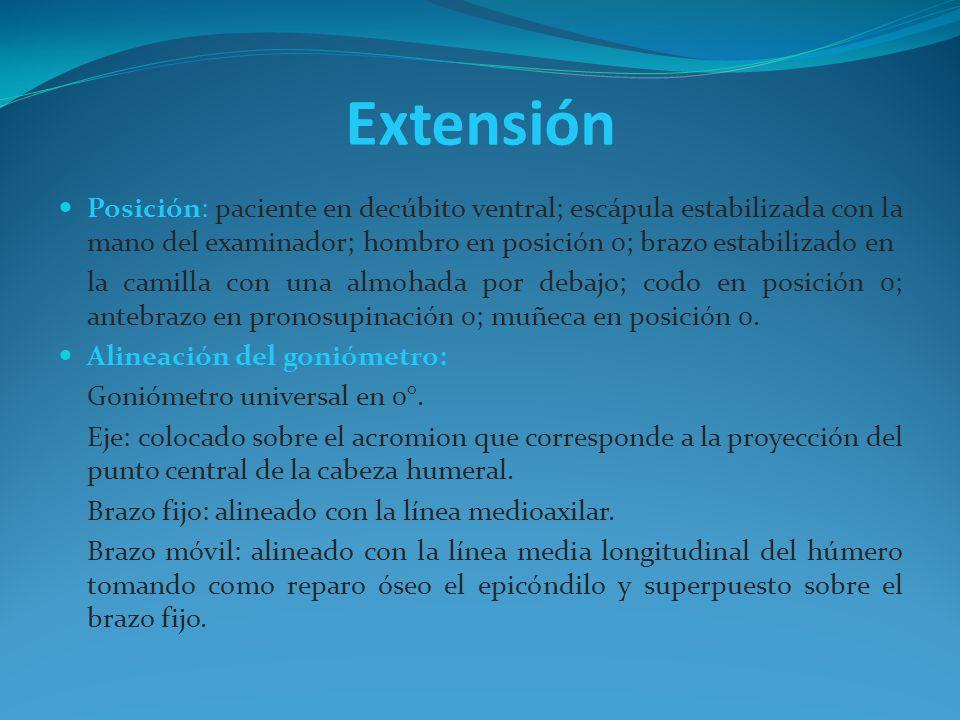 Extensión Posición: paciente en decúbito ventral; escápula estabilizada con la mano del examinador; hombro en posición 0; brazo estabilizado en.