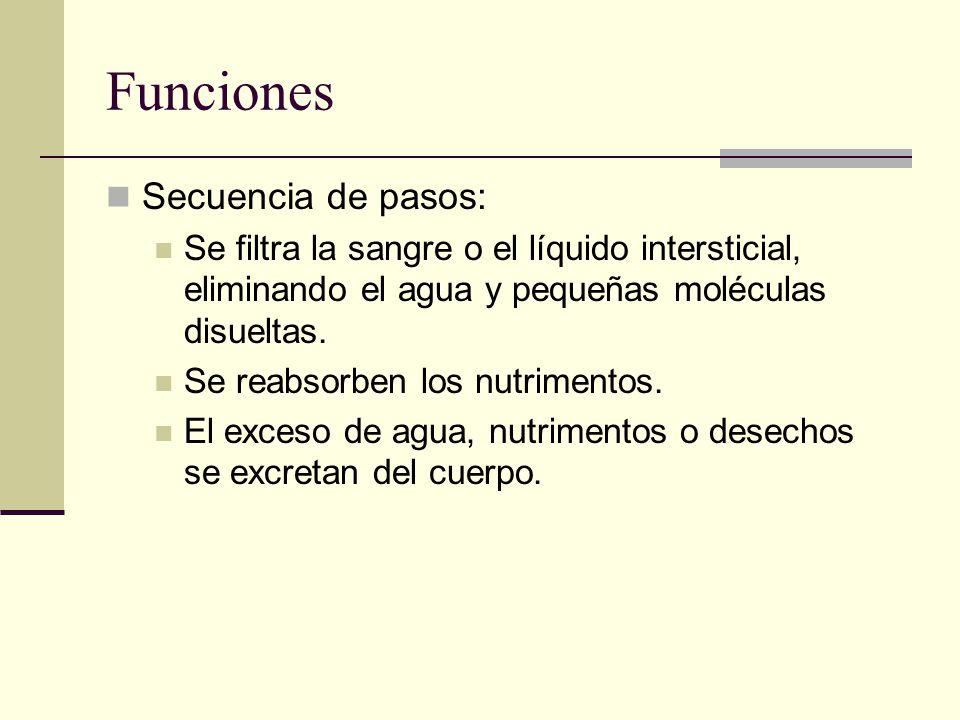 Funciones Secuencia de pasos: