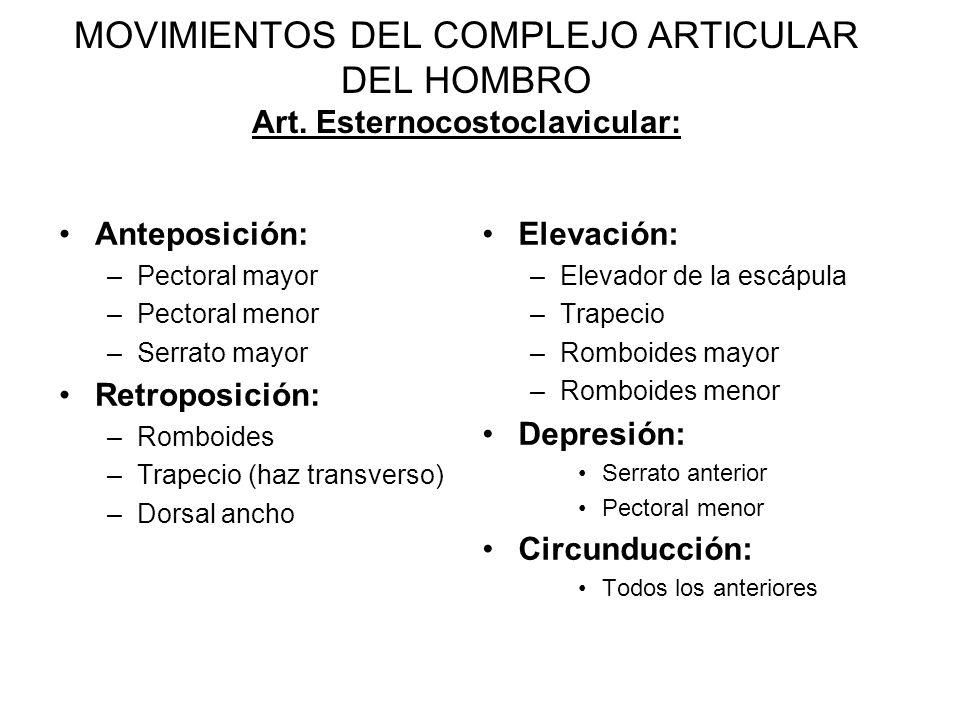 MOVIMIENTOS DEL COMPLEJO ARTICULAR DEL HOMBRO Art