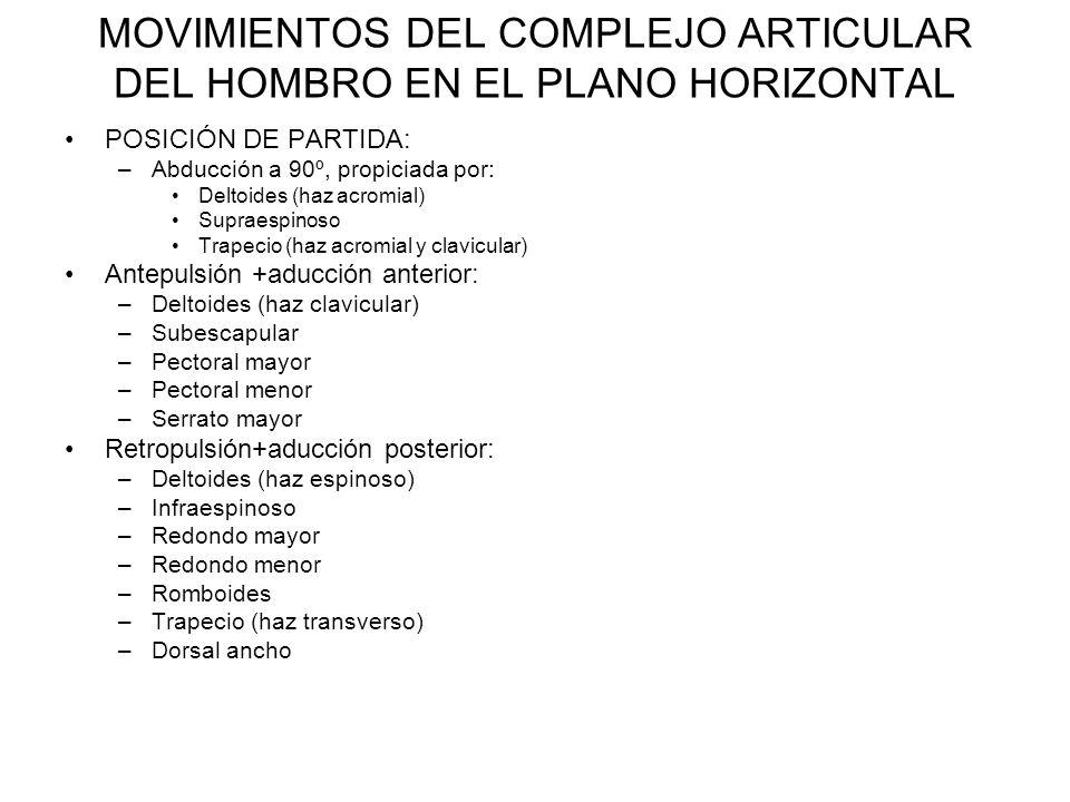 MOVIMIENTOS DEL COMPLEJO ARTICULAR DEL HOMBRO EN EL PLANO HORIZONTAL