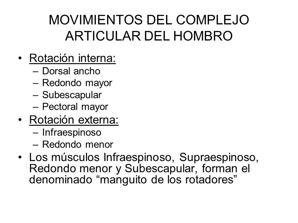 MOVIMIENTOS DEL COMPLEJO ARTICULAR DEL HOMBRO