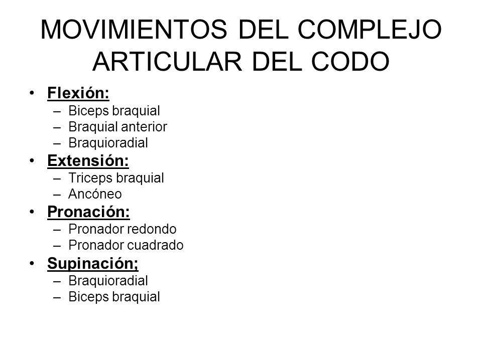 MOVIMIENTOS DEL COMPLEJO ARTICULAR DEL CODO