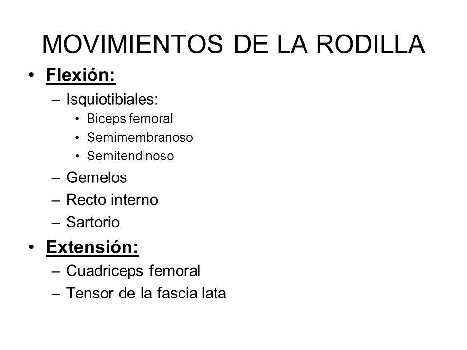 MOVIMIENTOS DE LA RODILLA