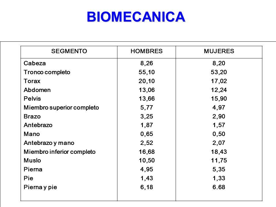 BIOMECANICA SEGMENTO HOMBRES MUJERES Cabeza Tronco completo Torax