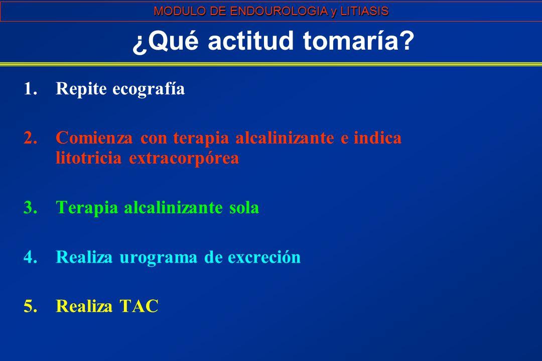 MODULO DE ENDOUROLOGIA y LITIASIS