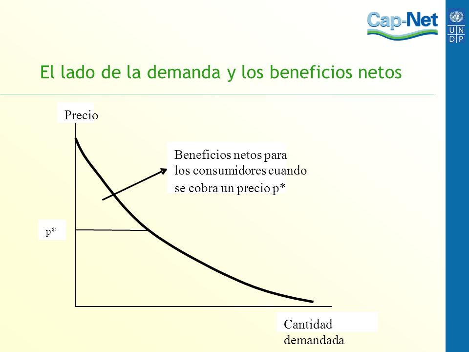 El lado de la demanda y los beneficios netos