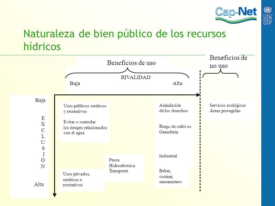 Naturaleza de bien público de los recursos hídricos