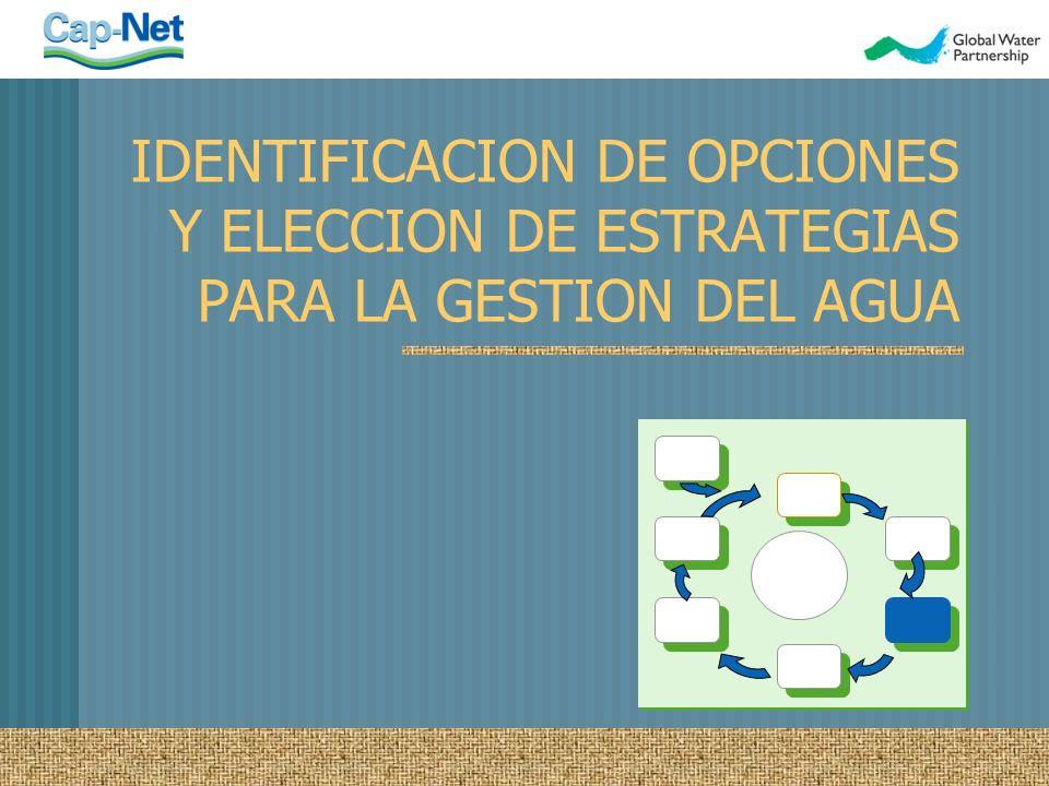 IDENTIFICACION DE OPCIONES Y ELECCION DE ESTRATEGIAS PARA LA GESTION DEL AGUA