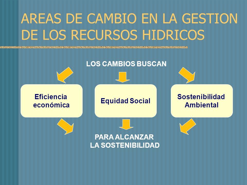 AREAS DE CAMBIO EN LA GESTION DE LOS RECURSOS HIDRICOS