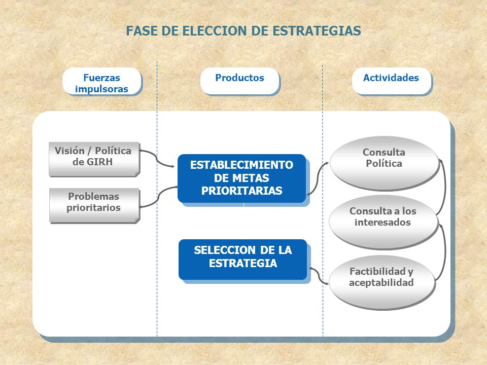 FASE DE ELECCION DE ESTRATEGIAS