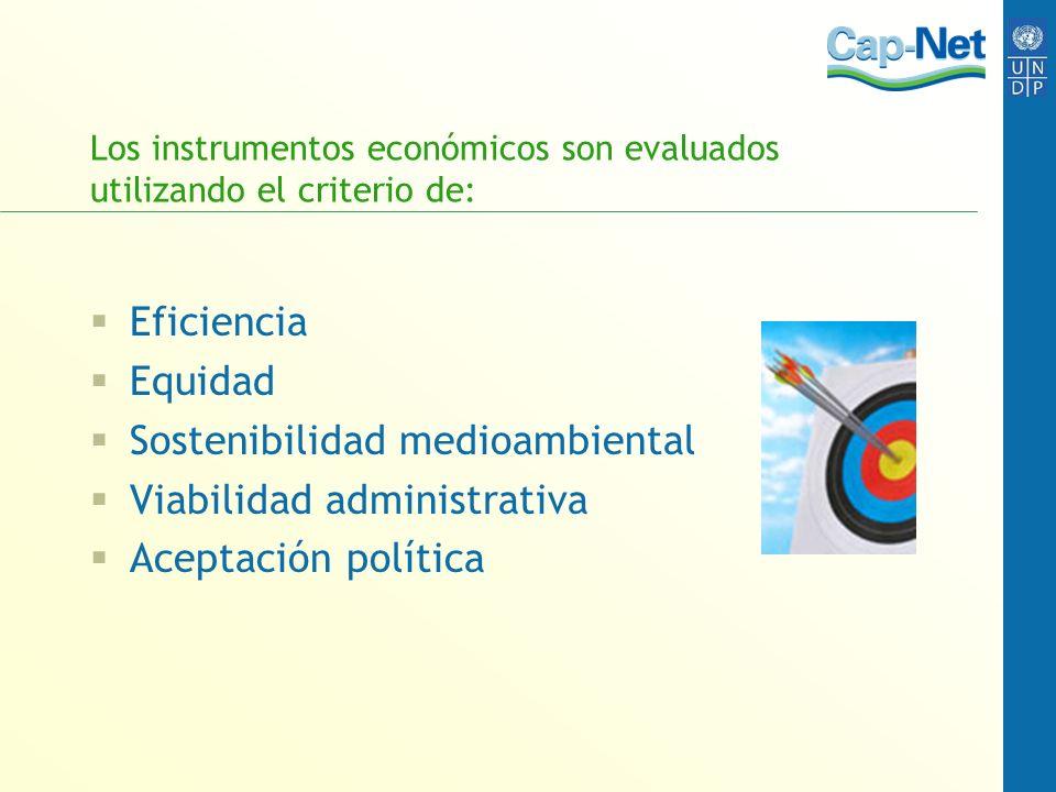 Los instrumentos económicos son evaluados utilizando el criterio de: