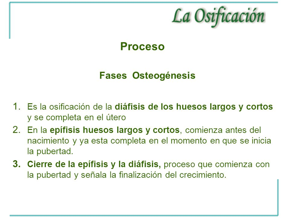 Proceso Fases Osteogénesis