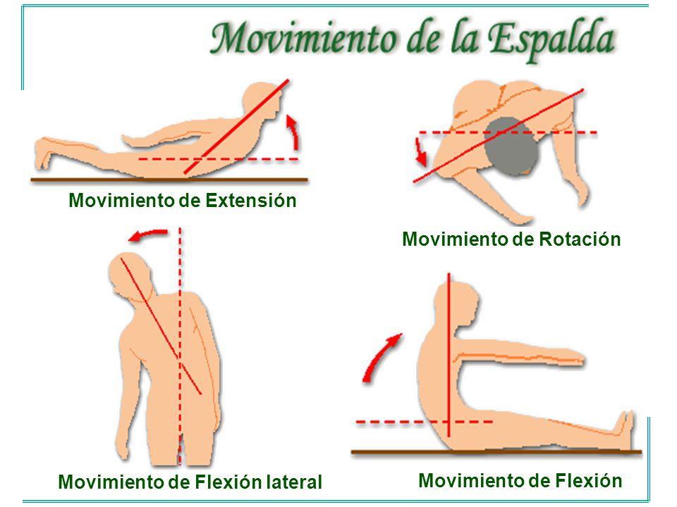 Movimiento de Extensión