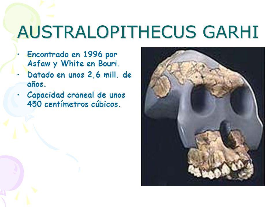 AUSTRALOPITHECUS GARHI