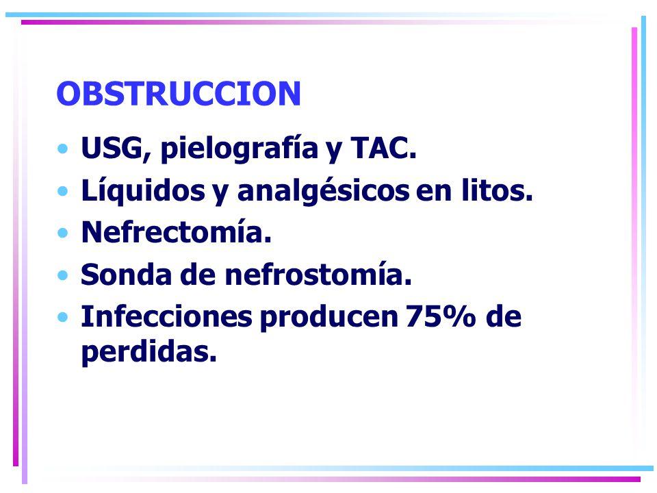 OBSTRUCCION USG, pielografía y TAC. Líquidos y analgésicos en litos.
