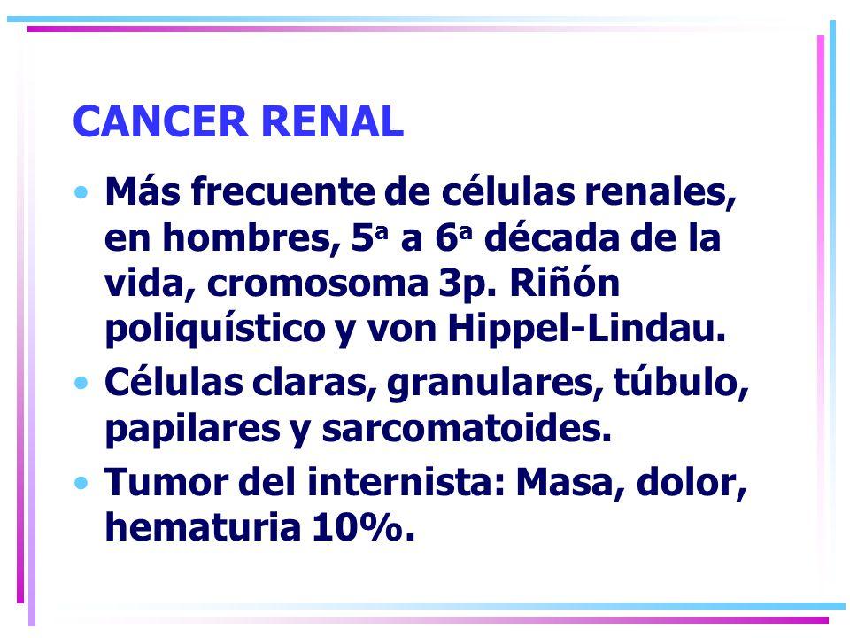 CANCER RENAL Más frecuente de células renales, en hombres, 5a a 6a década de la vida, cromosoma 3p. Riñón poliquístico y von Hippel-Lindau.