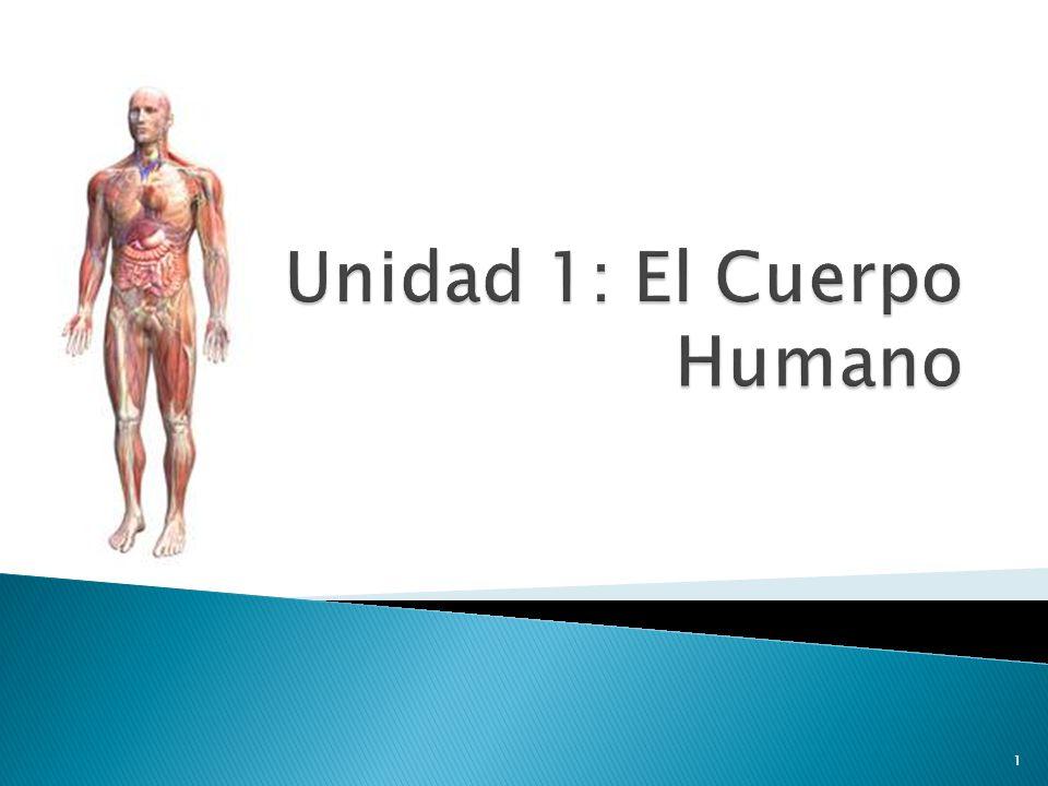 Unidad 1: El Cuerpo Humano