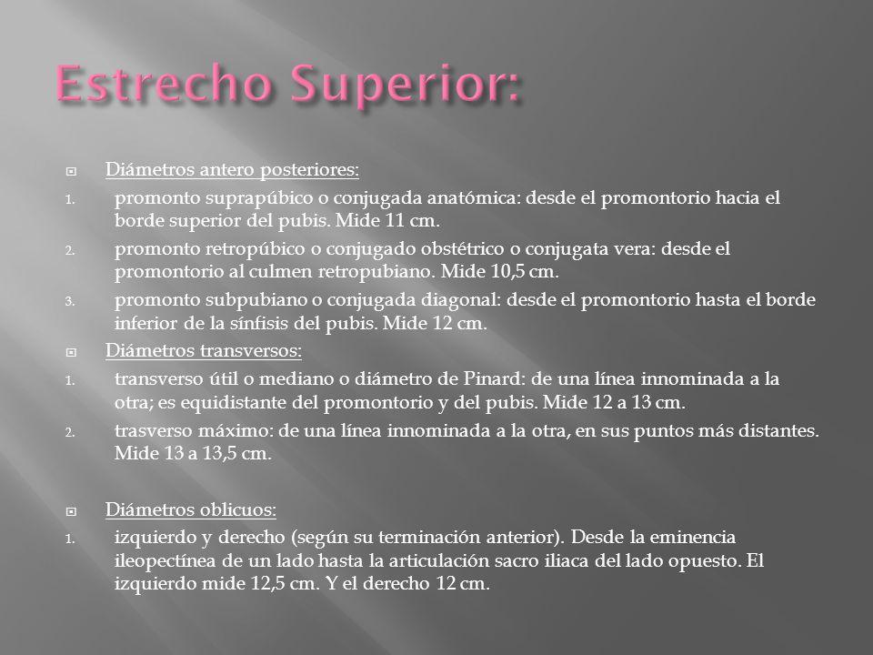 Estrecho Superior: Diámetros antero posteriores: