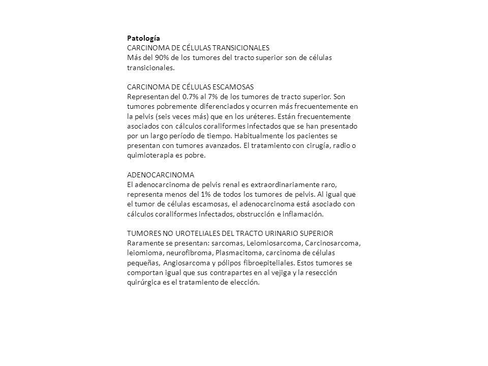 Patología CARCINOMA DE CÉLULAS TRANSICIONALES. Más del 90% de los tumores del tracto superior son de células transicionales.