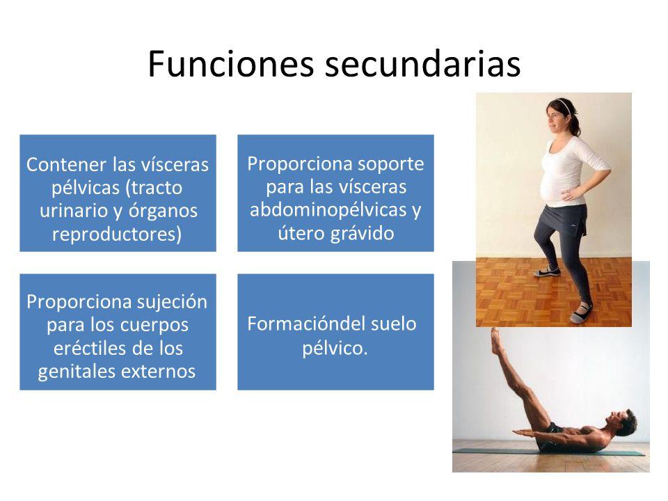 Funciones secundarias