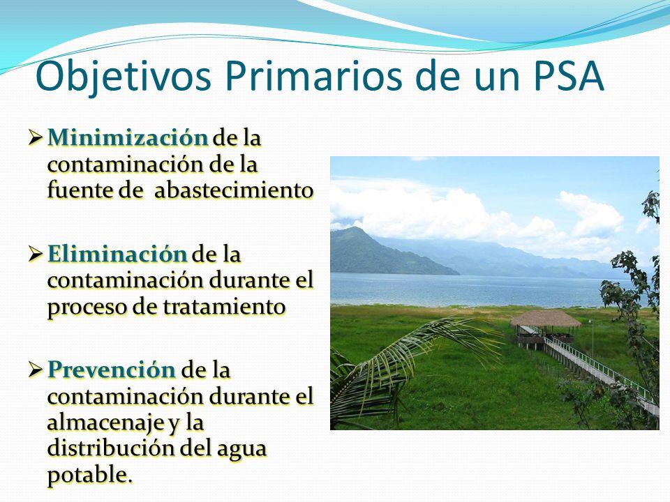 Objetivos Primarios de un PSA