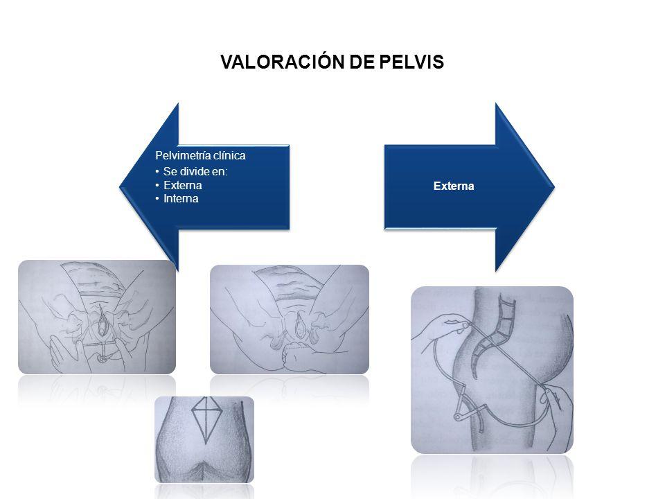 VALORACIÓN DE PELVIS Pelvimetría clínica Se divide en: Externa Interna