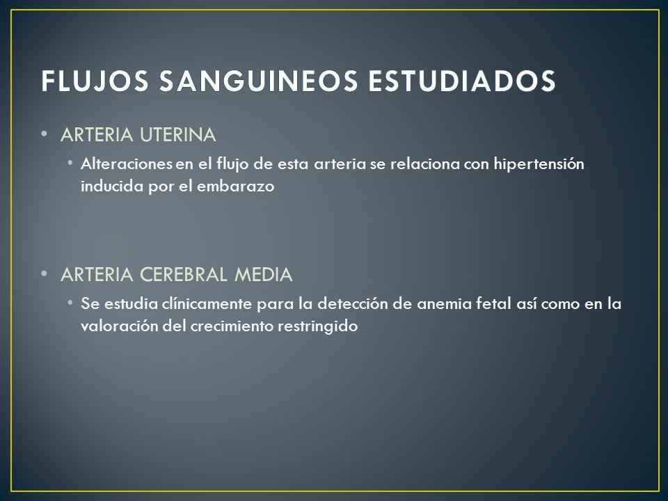 FLUJOS SANGUINEOS ESTUDIADOS
