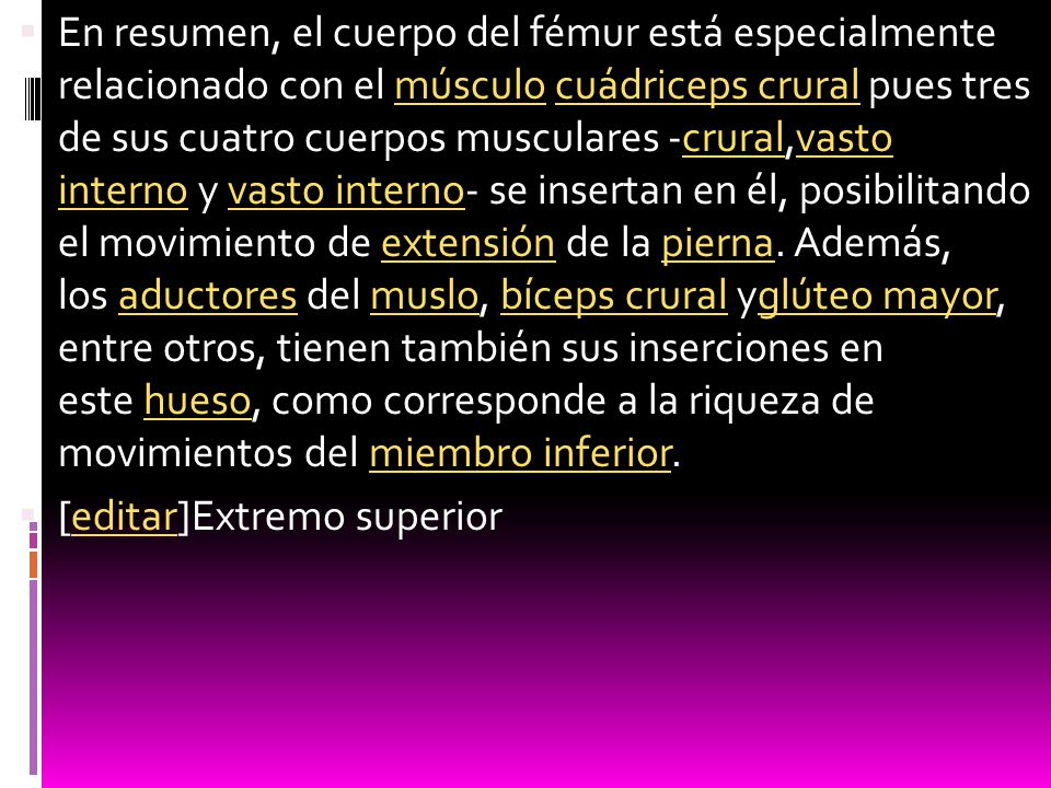 En resumen, el cuerpo del fémur está especialmente relacionado con el músculo cuádriceps crural pues tres de sus cuatro cuerpos musculares -crural,vasto interno y vasto interno- se insertan en él, posibilitando el movimiento de extensión de la pierna. Además, los aductores del muslo, bíceps crural yglúteo mayor, entre otros, tienen también sus inserciones en este hueso, como corresponde a la riqueza de movimientos del miembro inferior.
