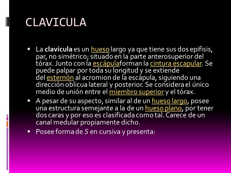 CLAVICULA