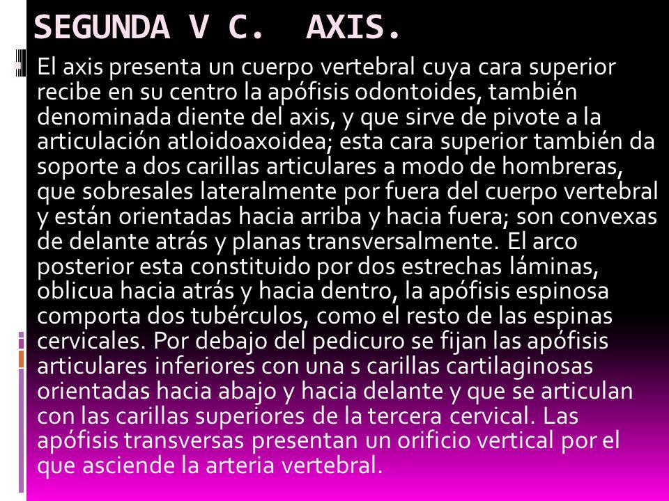 SEGUNDA V C. AXIS.