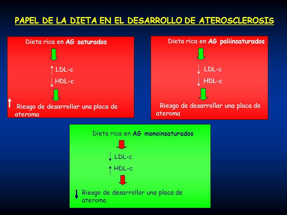 PAPEL DE LA DIETA EN EL DESARROLLO DE ATEROSCLEROSIS
