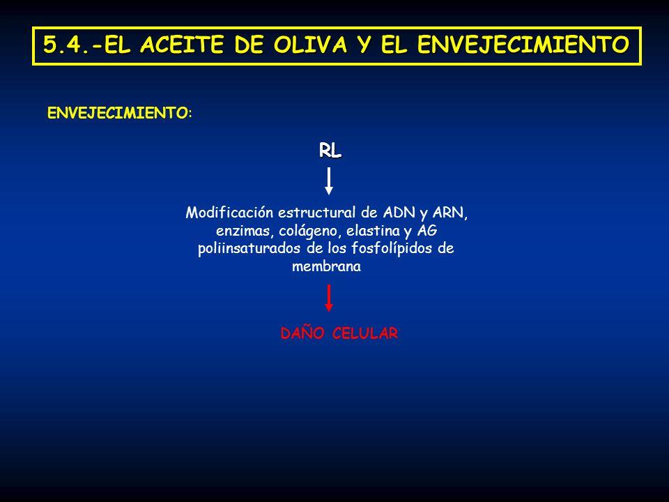 5.4.-EL ACEITE DE OLIVA Y EL ENVEJECIMIENTO