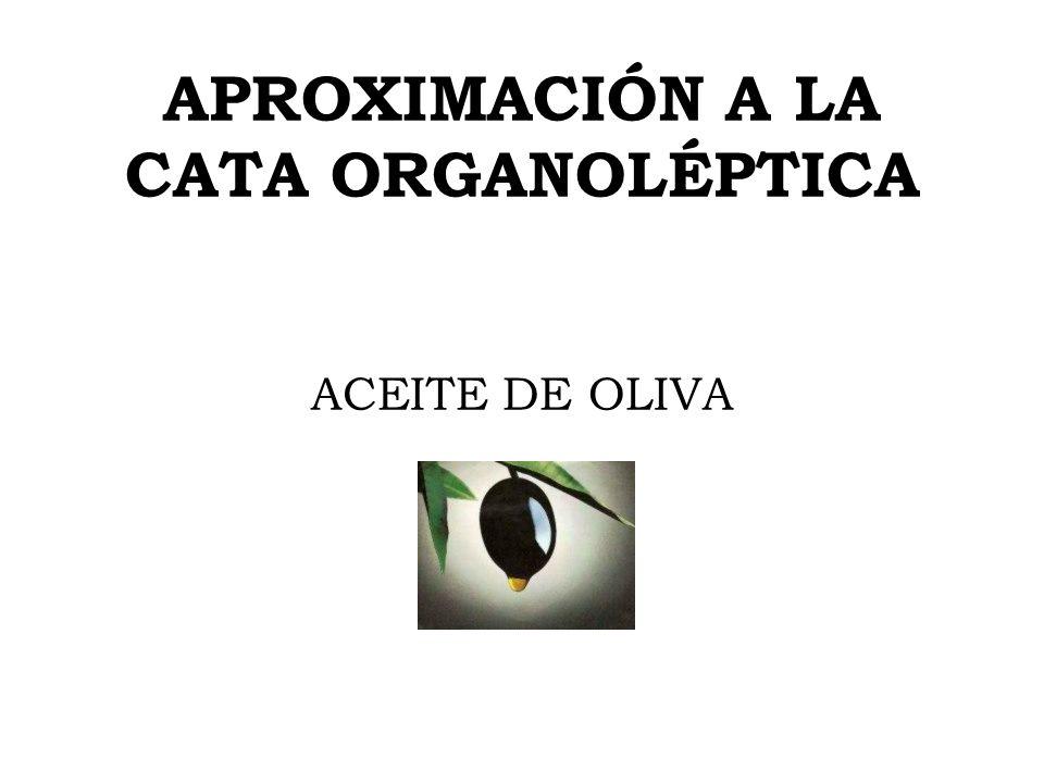 APROXIMACIÓN A LA CATA ORGANOLÉPTICA