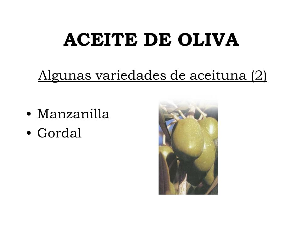 Algunas variedades de aceituna (2)